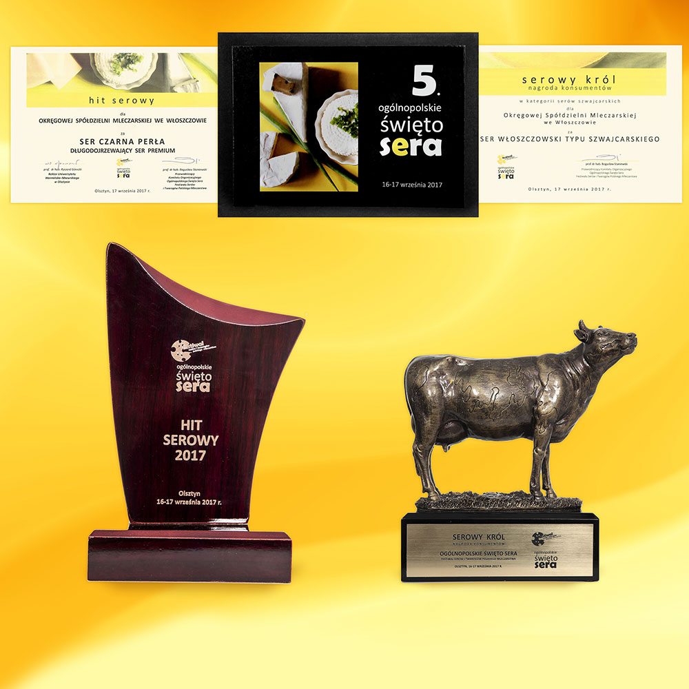 Sery OSM Włoszczowa nagrodzone na 5 Ogólnopolskim Święcie Sera