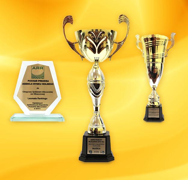 Nagrody, wyróżnienia dla OSM WŁOSZCZOWA